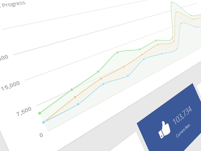 Facebook campaign tracking